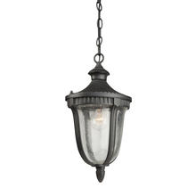 Artcraft AC8025MA - One Light Seeded Clear Glass Mahogany Hanging Lantern