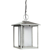 Generation Lighting - Seagull 69029-57 - One Light Outdoor Pendant