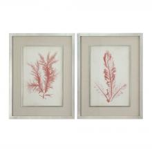 Uttermost 41578 - Uttermost Coral Sea Feathers Prints S/2